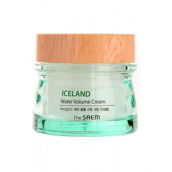 Минеральный крем на основе ледниковой воды для жирной кожи  THE SAEM Iceland Hydrating Water Volume Cream For Oily Skin